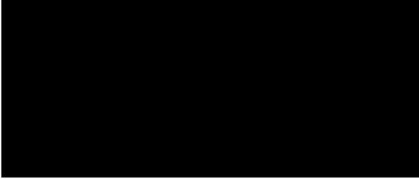 Hotel Pitti Palace Al Ponte Vecchio Logo